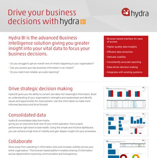 Hydra Cloud business intelligence strategy