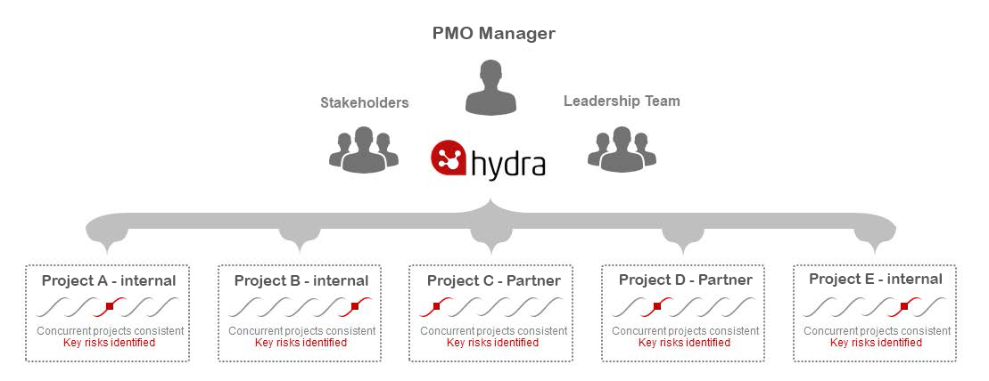 Hydra-Searchlight-final-brochure pmo manager image