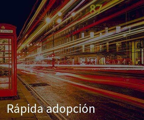 Rapida Adopcion